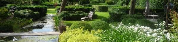 tuinaanleg-en-tuinonderhoud_Kapellen_Beeplant Nicolas Janssens_5.jpg