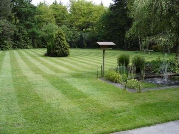 tuinaanleg-en-tuinonderhoud_Brasschaat_Van Gael - Verzorging van Groen_18.jpg