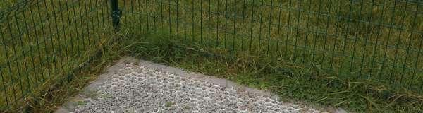 tuinaanleg-en-tuinonderhoud_Brasschaat_Van Gael - Verzorging van Groen_4.jpg