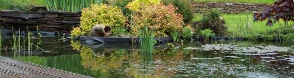 tuinaanleg-en-tuinonderhoud_Brasschaat_Van Gael - Verzorging van Groen_11.jpg