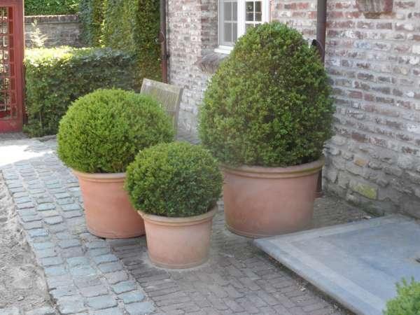 tuinaanleg-en-tuinonderhoud_Brasschaat_Van Gael - Verzorging van Groen_16.jpg