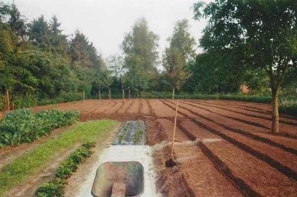 tuinaanleg-en-tuinonderhoud_Nijlen Kessel_Tuinwerken Wim Simons_3.jpg