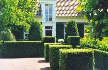 tuinaanleg-en-tuinonderhoud_Stabroek_Landscaping nv_6.jpg