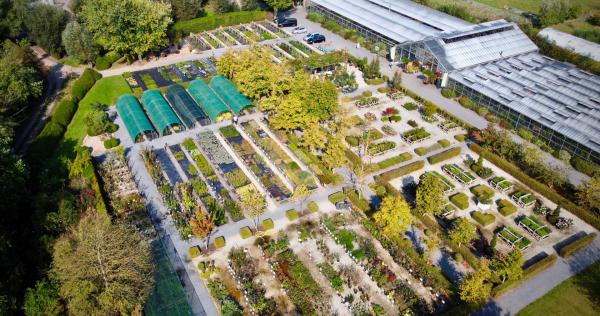 tuinaanleg-en-tuinonderhoud_Oostkamp_Het Wilgenbroek - Plantencentrum_5.jpg