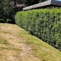 tuinaanleg-en-tuinonderhoud_Zedelgem_Denolf / Wouter_3.jpg