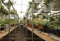 tuinaanleg-en-tuinonderhoud_De Haan_Argos Groencenter_5.jpg