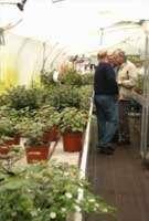 tuinaanleg-en-tuinonderhoud_De Haan_Argos Groencenter_3.jpg