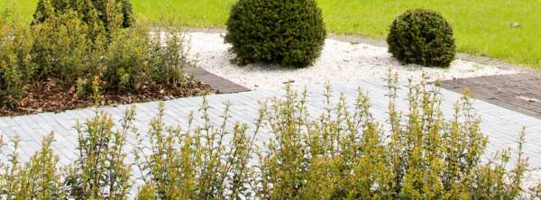 tuinaanleg-en-tuinonderhoud_Lummen_Lummens Tuinbedrijf Reynders_6.jpg