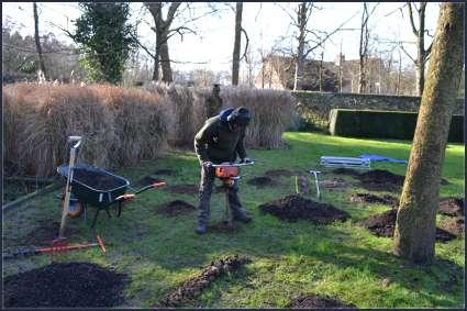 tuinaanleg-en-tuinonderhoud_Kortrijk_Lukas ameye_10.jpg