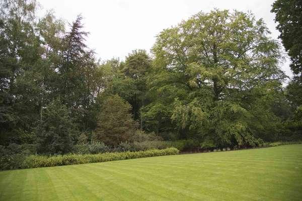 tuinaanleg-en-tuinonderhoud_Kampenhout_Tuinmakers_12.jpg