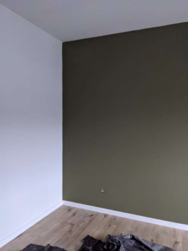 schilder_As_Pro Painting_7.jpg