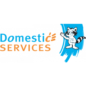 Domestic Services Kortrijk, Huishoudhulp met Dienstencheques, Poetsvrouw.jpg