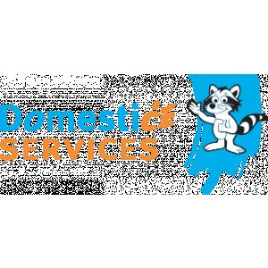 Domestic Services Heist-op-den-Berg, Huishoudhulp met Dienstencheques, Poetsvrouw.jpg