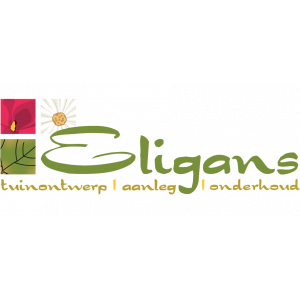 Eligans (Eligans bv tuinaanleg en tuinonderhoud).jpg