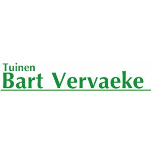 Vervaeke / Bart.jpg