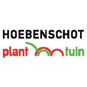 Hoebenschot (Hoebenschot plant en tuin).jpg