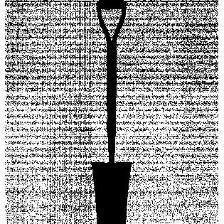 Hoveniers Peter Lorré.jpg