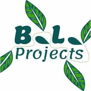 B.L. Projects.jpg