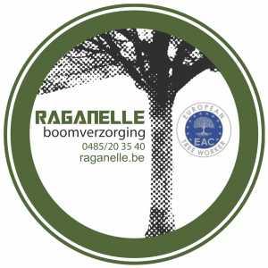Raganelle boomverzorging BV.jpg