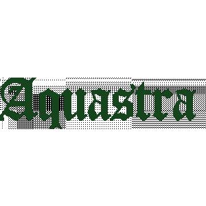 Aquastra Gevelreiniging.jpg