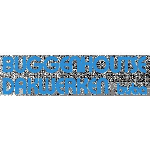 Buggenhoutse Dakwerken Bvba.jpg