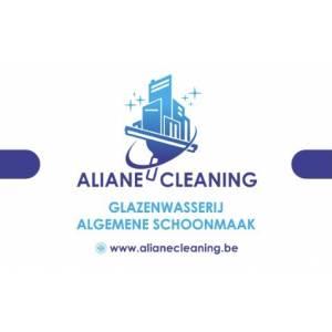 aliane cleaning.jpg