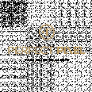 Perfect Pixel.jpg