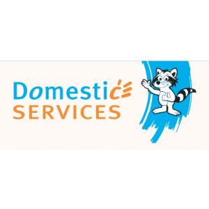 Domestic Services Grâce-Hollogne - Aide-Ménagère avec Titres-Services.jpg