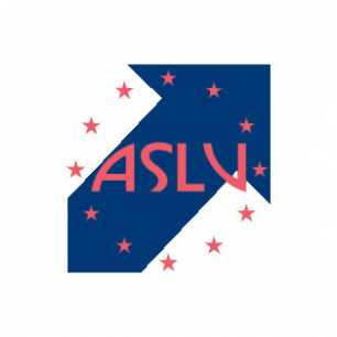ASLV Cleaning Company.jpg