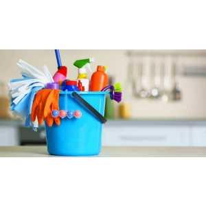 rebelo cleaning.jpg
